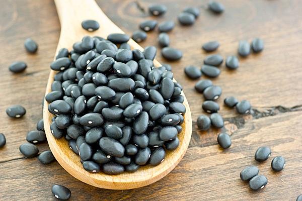 Trang bị kiến thức cần thiết để trồng đậu đen năng suất cao.